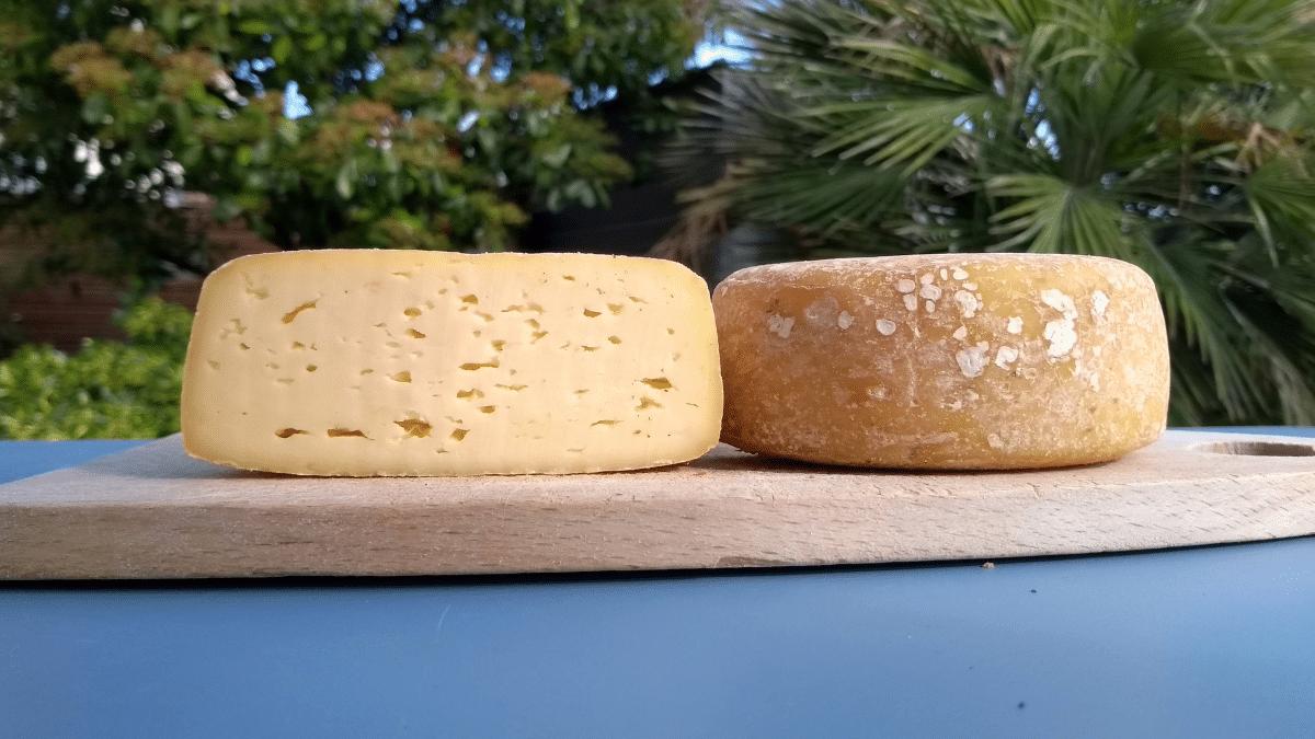 faire du fromage à la maison